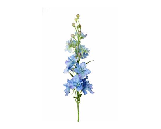 Blauwe delphinium