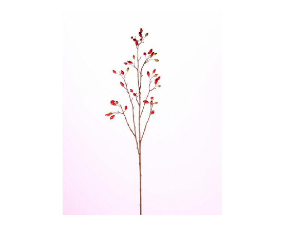 Rode rozenbottel tak