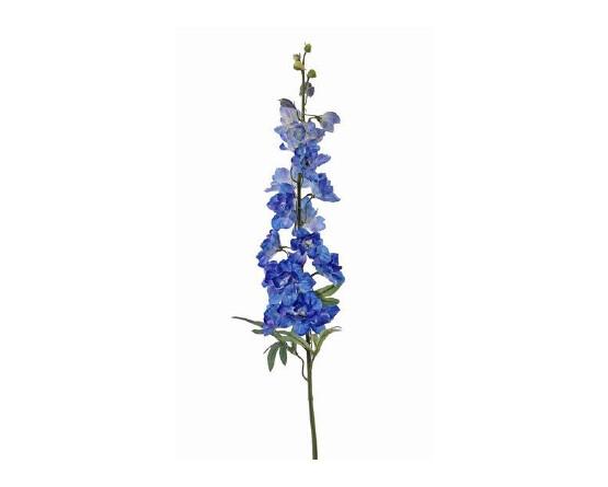 Delphinium blauw