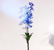 Fritillaria blauw