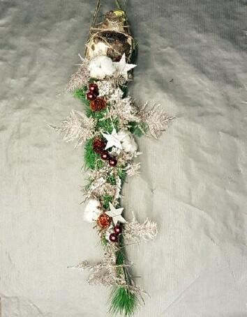 Vier kerst met de Amaryllis
